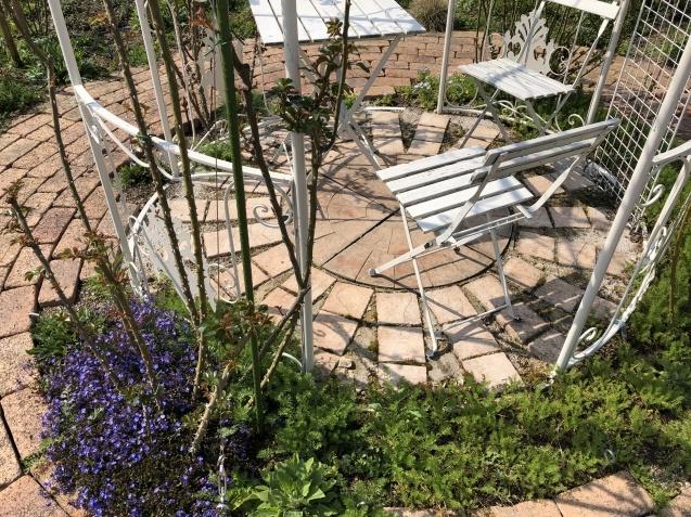 バラのガゼボを囲うレンガ道にバラ苗「ヴァネッサ・ベル」「ジ・エンシェント・マリナー」を植えました_a0243064_17163692.jpg