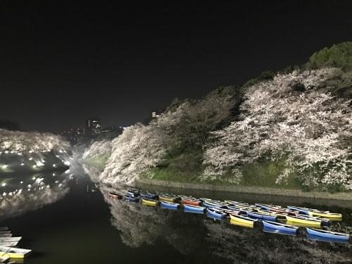 お花見 in 東京!_a0289775_18285496.jpg