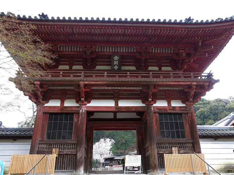 190331天野山金剛寺までウォーキング_d0036883_20191852.jpg
