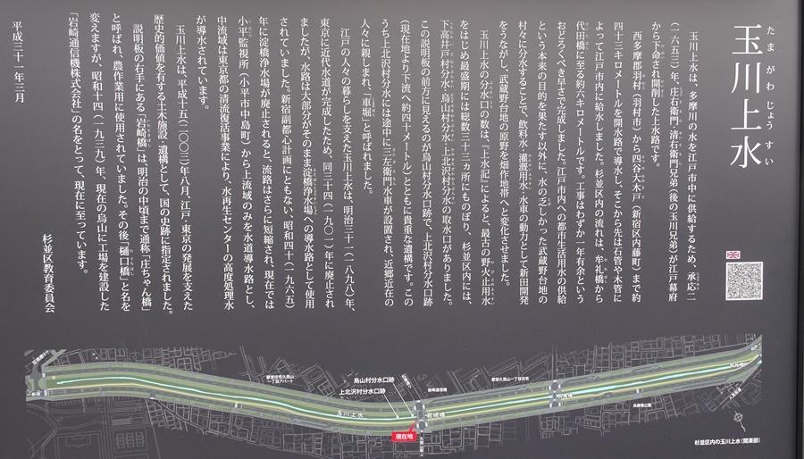桜を見ながら 玉川上水を歩く(最終章)_c0051105_17183862.jpg
