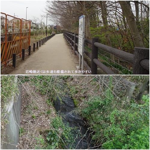 桜を見ながら 玉川上水を歩く(最終章)_c0051105_17221506.jpg