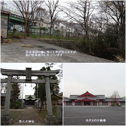 桜を見ながら 玉川上水を歩く(最終章)_c0051105_17541787.jpg