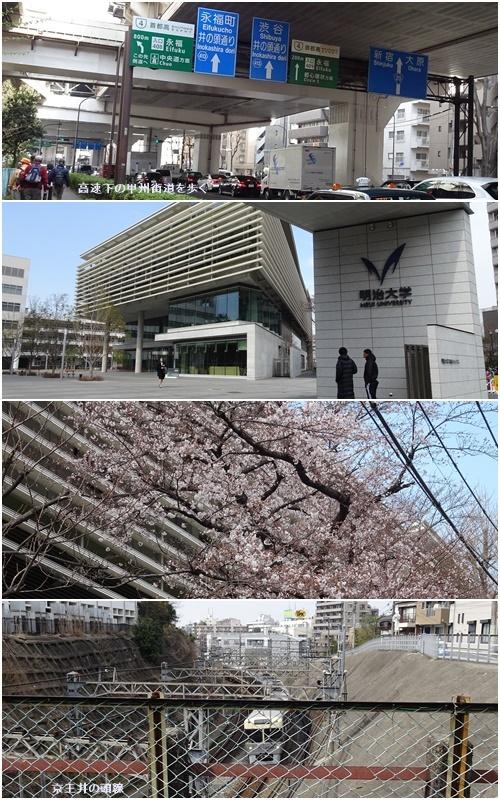 桜を見ながら 玉川上水を歩く(最終章)_c0051105_21131719.jpg