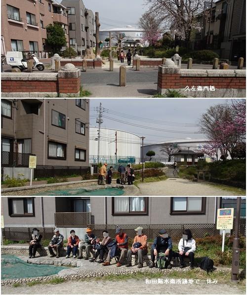桜を見ながら 玉川上水を歩く(最終章)_c0051105_22392224.jpg