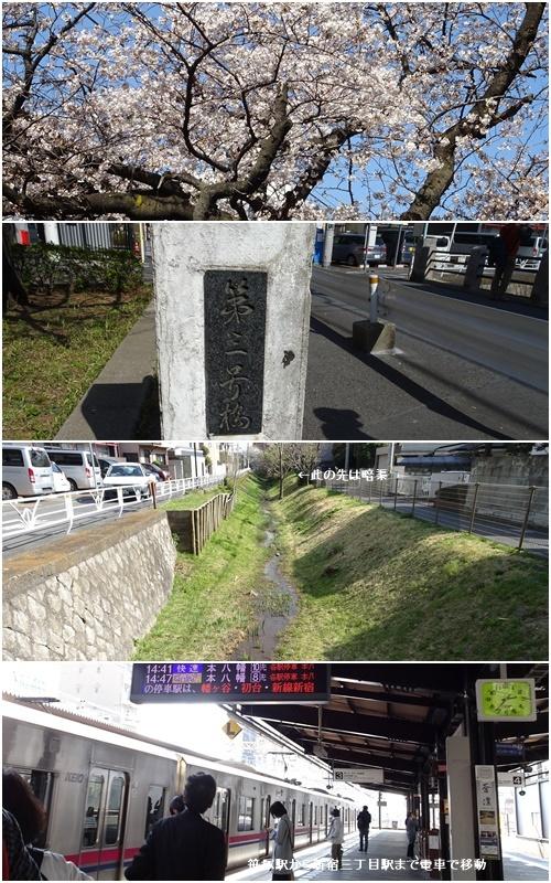 桜を見ながら 玉川上水を歩く(最終章)_c0051105_23334208.jpg