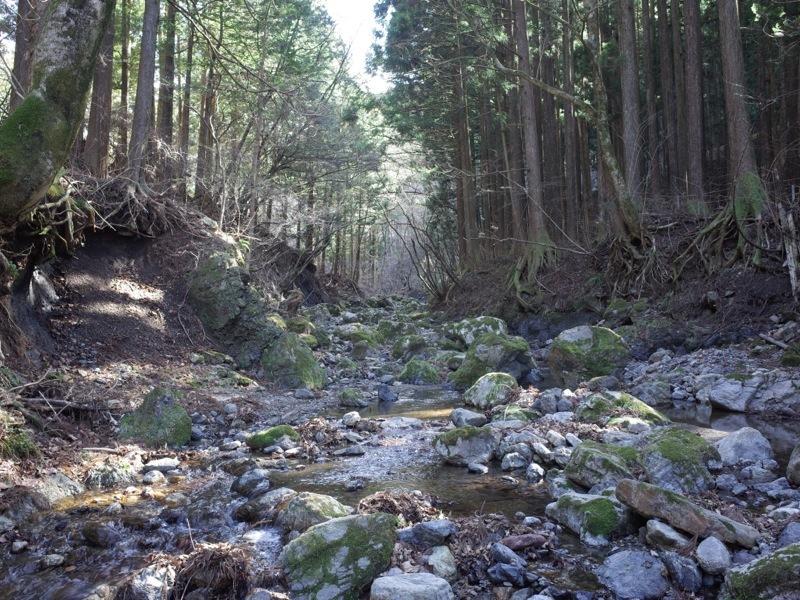 山の花道_e0276411_22343355.jpg