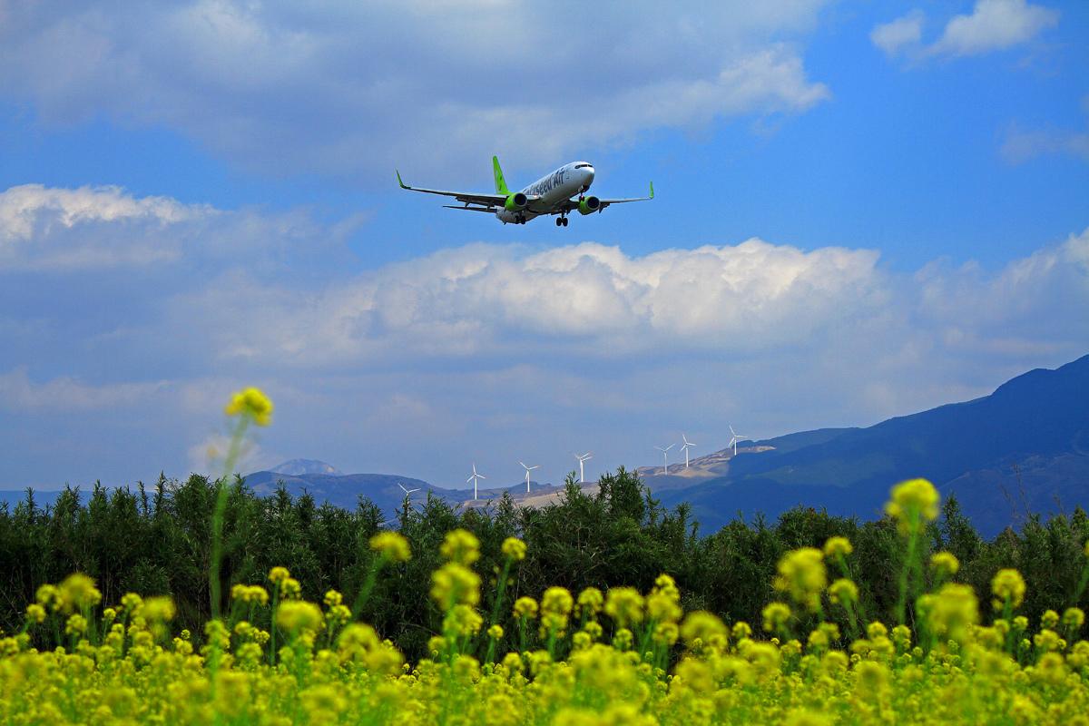 昨日の阿蘇熊本飛行場。_b0044115_07474216.jpg