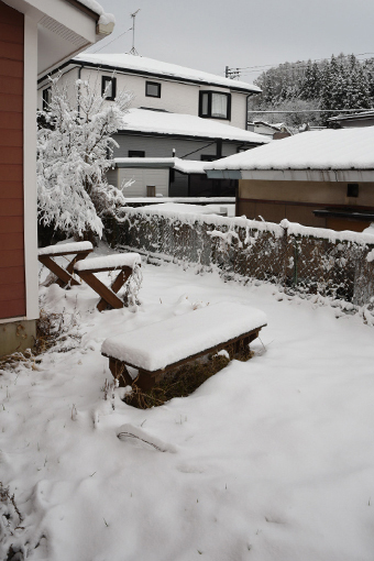 雪の誕生日にアレしてソレして_b0259218_06071693.jpg