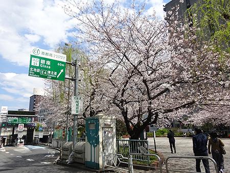 お花見弁当と新元号_f0097523_14403017.jpg
