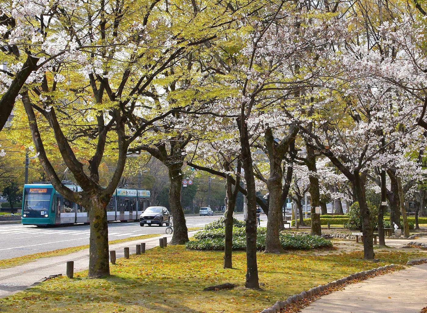【春の広電】_a0251146_13314724.jpg