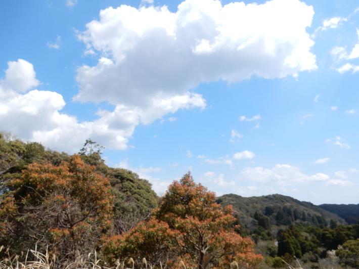 '19,4,1(月)今日も桜公園を独り占め!_f0060461_07243800.jpg