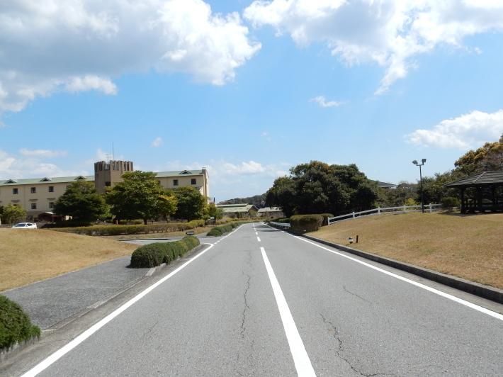 '19,4,1(月)今日も桜公園を独り占め!_f0060461_07281603.jpg