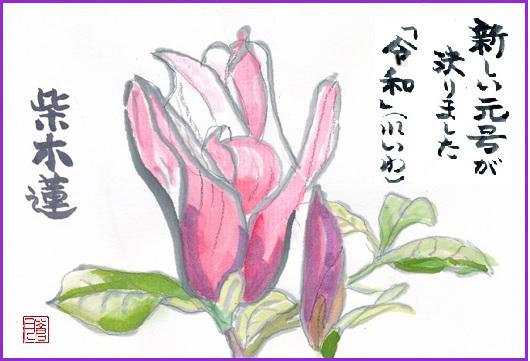 b0394397_16370896.jpg