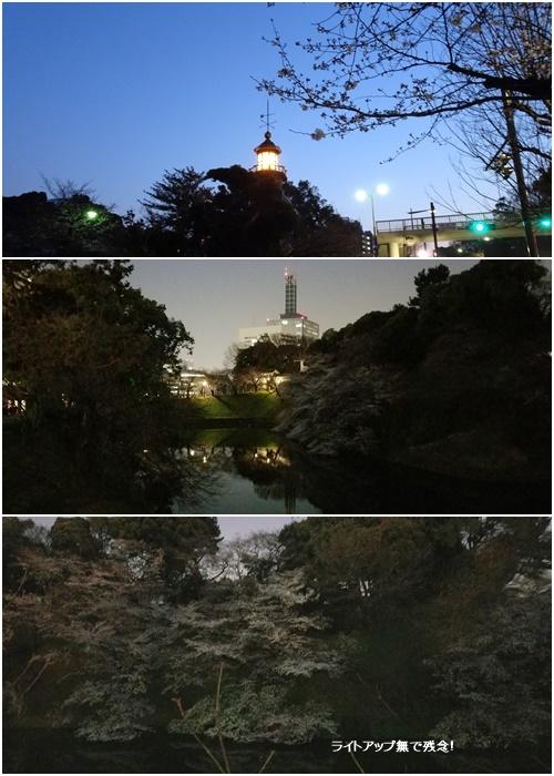 桜を見ながら 玉川上水を歩く(最終章)_c0051105_11111887.jpg