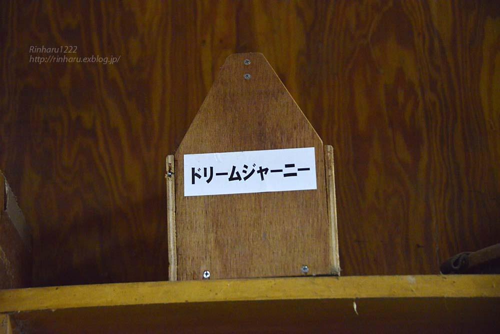 2019.3.13 社台SS分場☆ドリームジャーニー【Dream Journey】_f0250322_2313644.jpg
