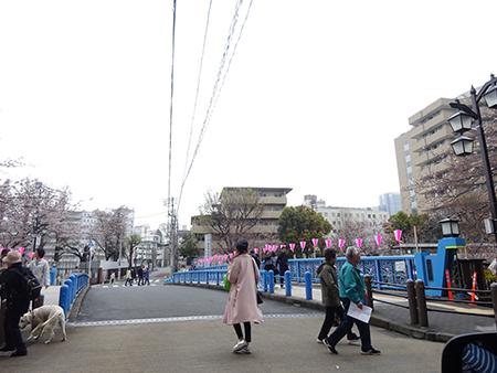 日曜日の目黒川_f0097523_13143460.jpg