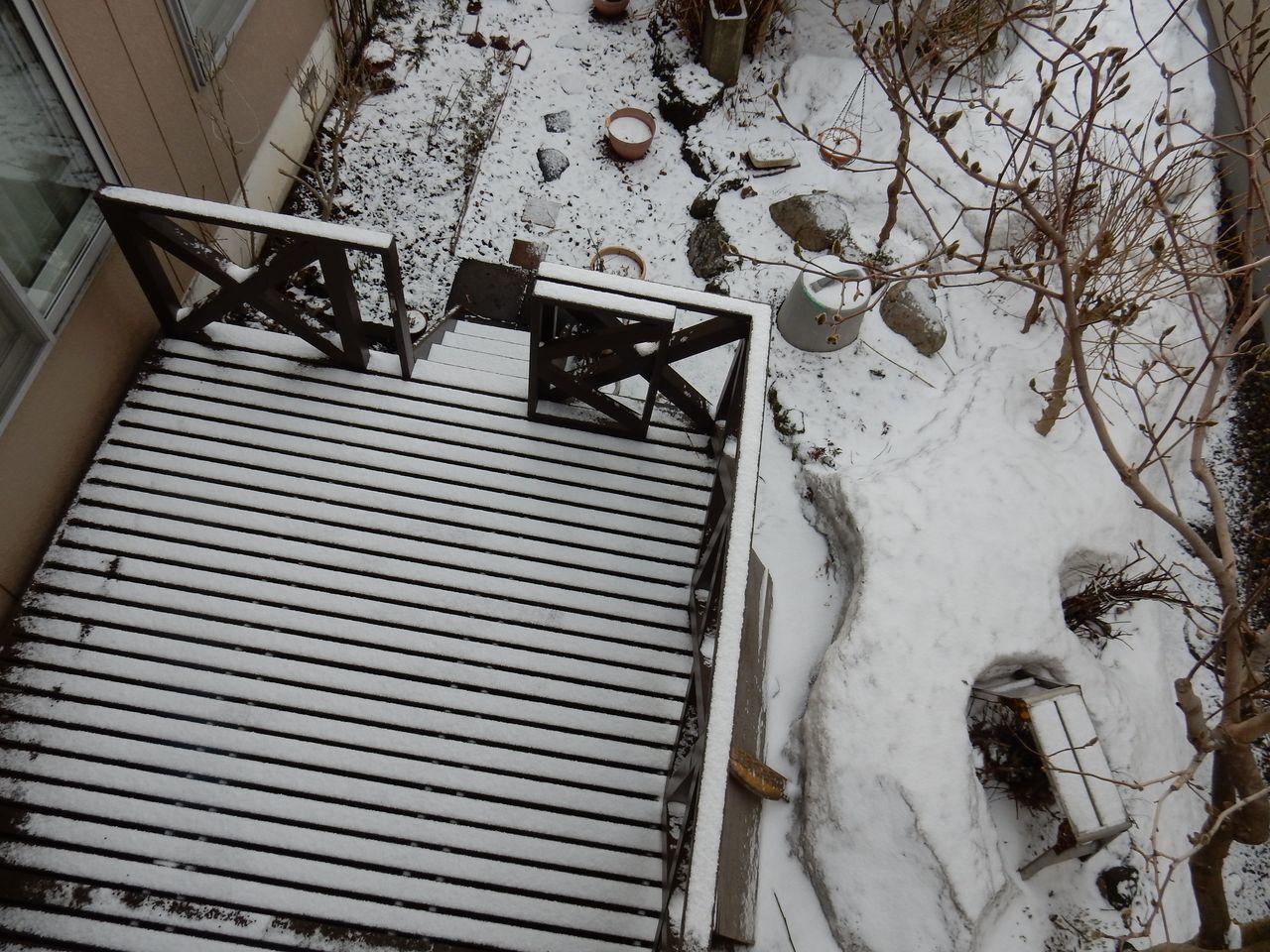なかなか暖かくなりません_c0025115_21593053.jpg