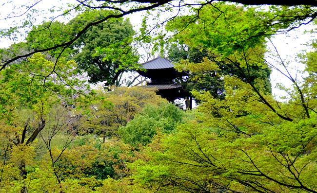 「ホテル椿山荘東京 ル・ジャルダンのアップルパイ」_a0000029_10040243.jpg