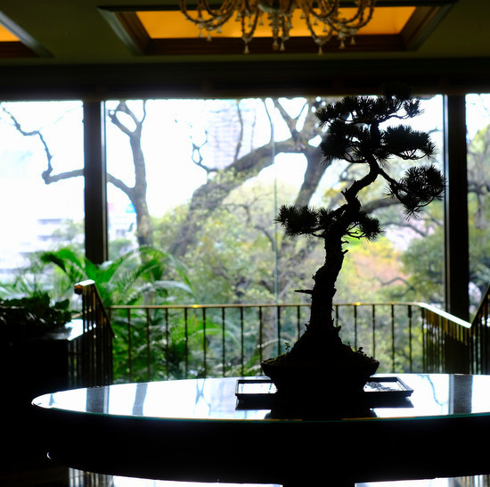 「ホテル椿山荘東京 ル・ジャルダンのアップルパイ」_a0000029_10105868.jpg