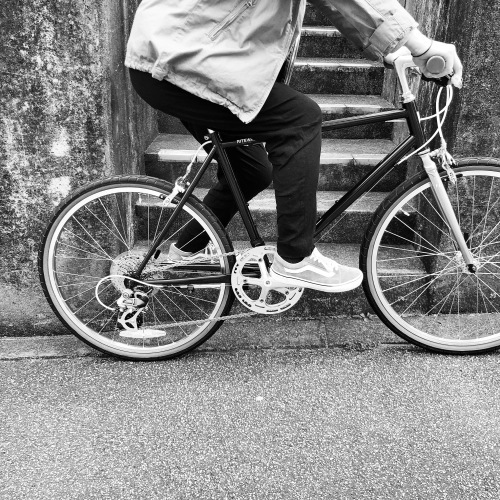 2019 RITEWAY 『 STYLES 24 』スタイルス 24インチ グレイシアSW ライトウェイ シェファード パスチャー シェファードシティ クロスバイク 自転車女子 おしゃれ自転車_b0212032_17583241.jpeg