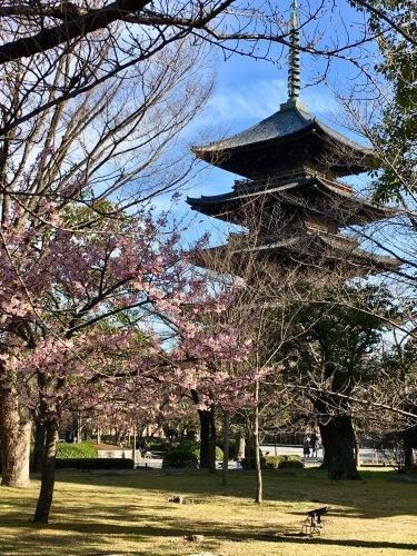 京都の旅\'19Ⅱ その3_e0326953_22464636.jpeg