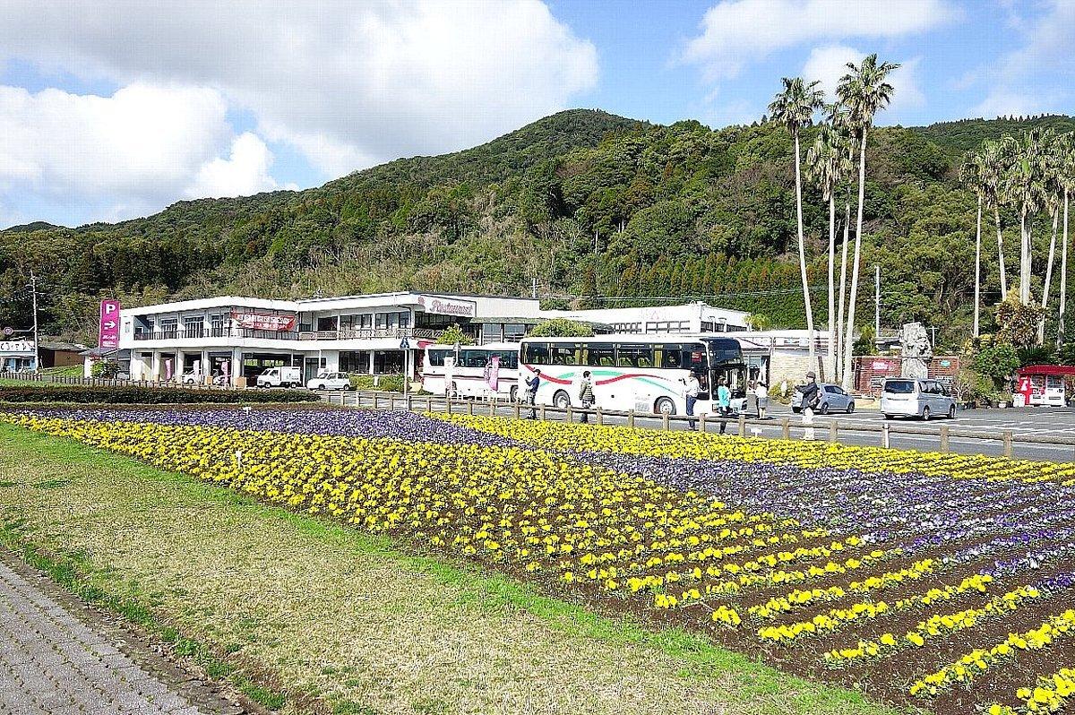 池田湖とイッシー_c0112559_08110647.jpg