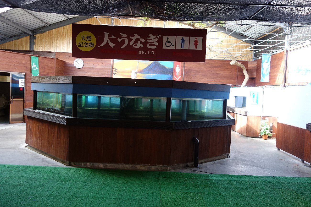 池田湖とイッシー_c0112559_08130349.jpg