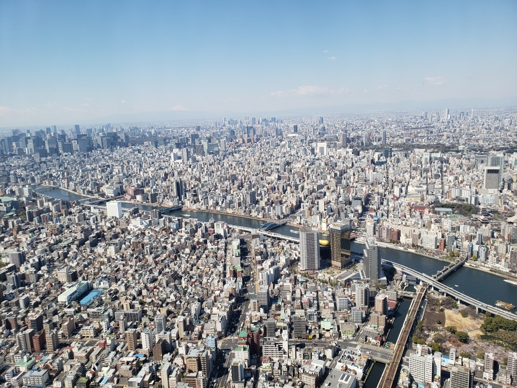 東京見物ツアー_c0160277_00133469.jpg