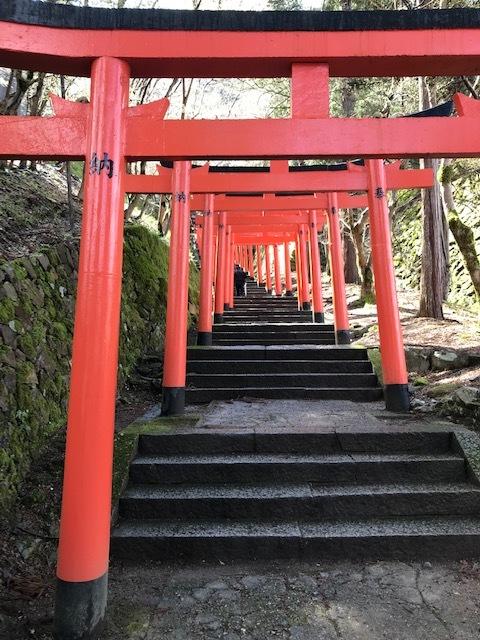 城崎へ 出石の桜_f0204295_13575266.jpg