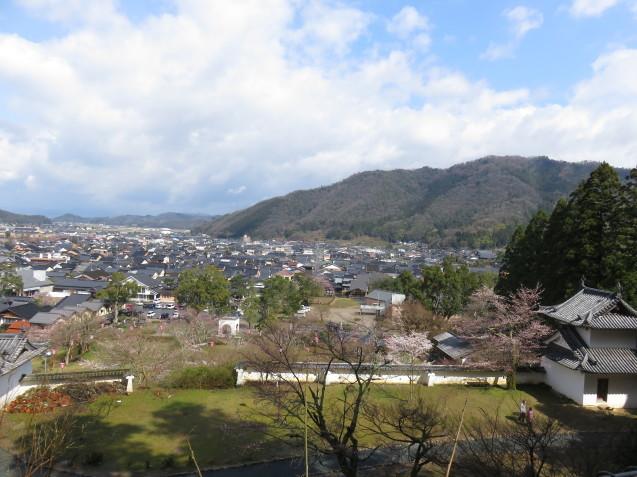 城崎へ 出石の桜_f0204295_14104361.jpg