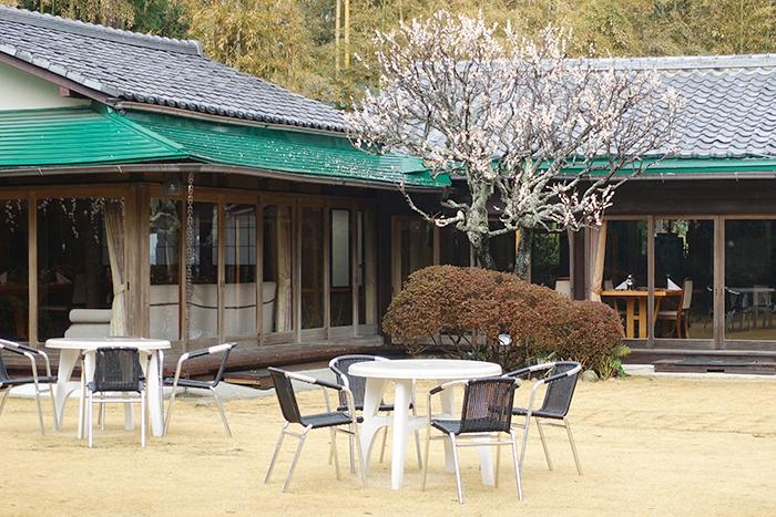 満開の桜を眺めながら至福のランチ ローストビーフ鎌倉山本店_b0145398_23593143.jpg