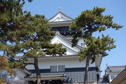 岡崎城公園_a0152501_18541403.jpg