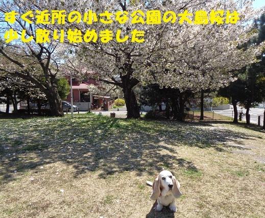 f0121712_16023016.jpg