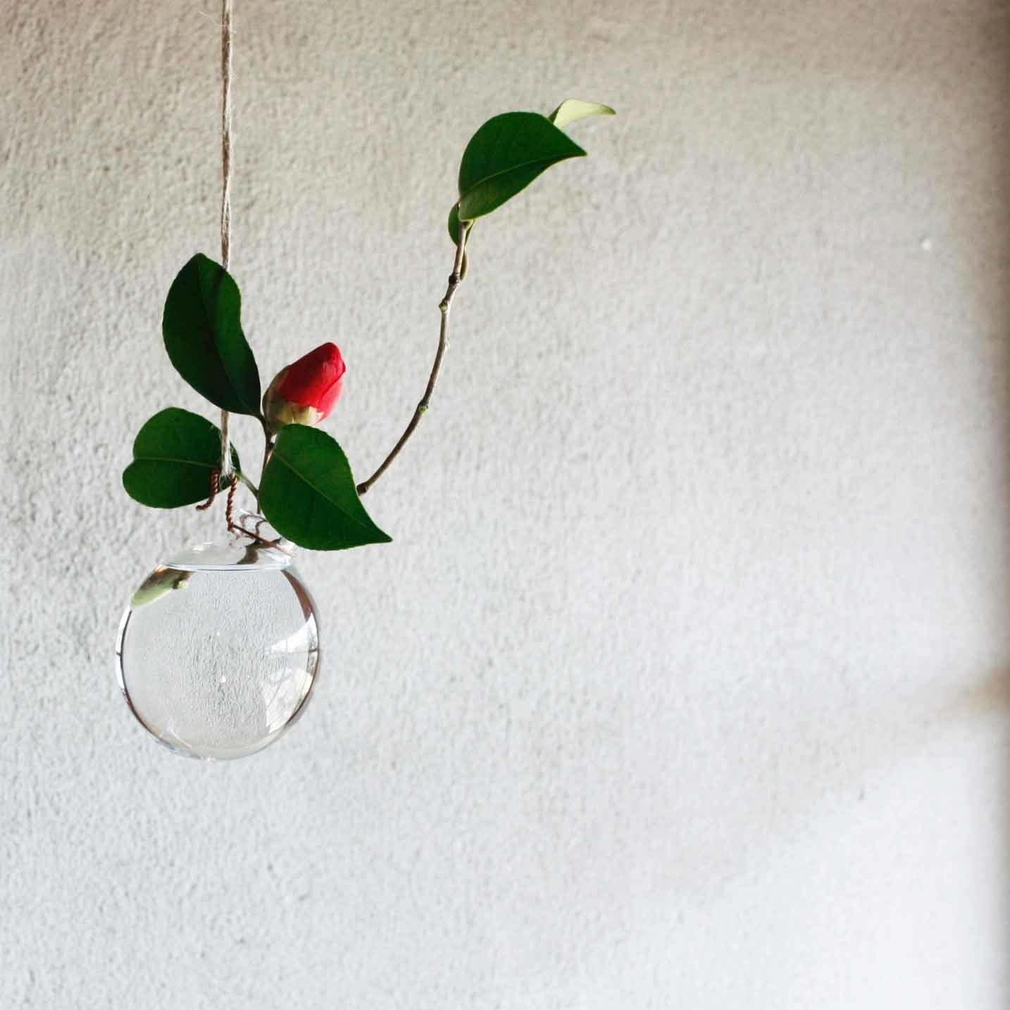 a flower_d0210537_14331477.jpg