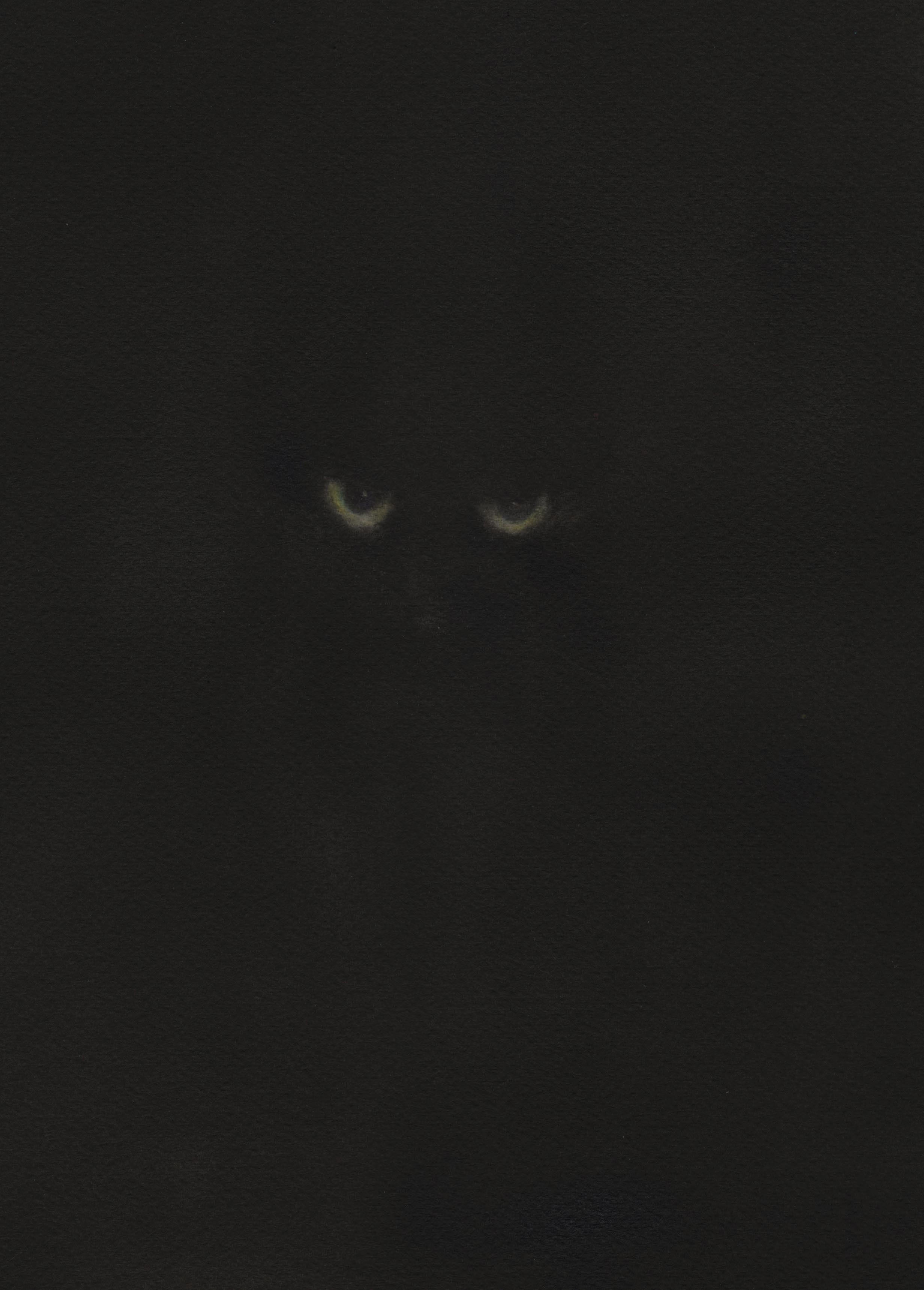 猫 水彩画_f0176370_10001486.jpg
