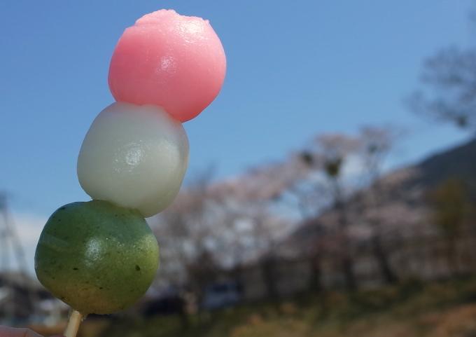 伊勢の桜 2019_c0188784_19203356.jpg