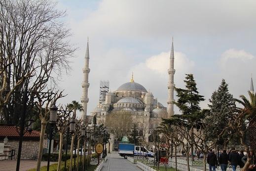 Kedi seyahat イスタンブールの旅 1_e0061785_21065910.jpg