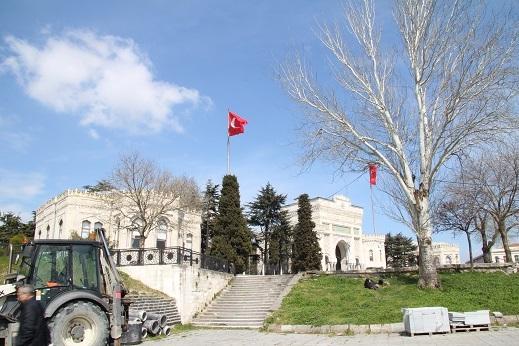 Kedi seyahat イスタンブールの旅 4_e0061785_21402573.jpg