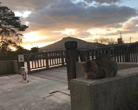 糸島富士・可也山(かやさん)_f0232994_10143286.jpg