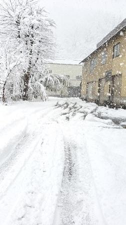 雪の記録_a0128408_15171890.jpg