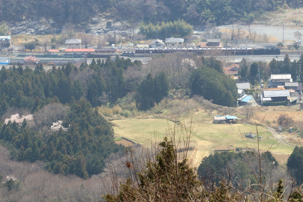 小さな山桜 - 2019年春・秩父鉄道 -_b0190710_20043975.jpg
