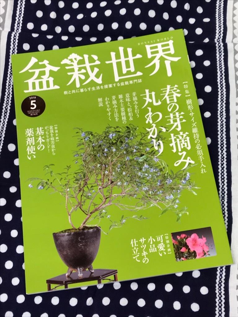 盆栽世界5月号 2019_f0170915_13282188.jpg