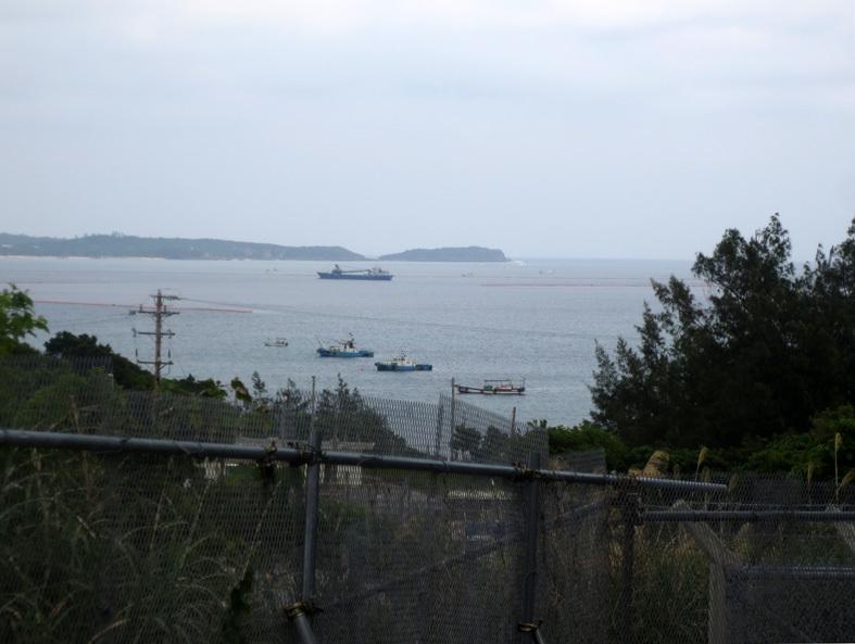 ■辺野古海岸で宝貝を探す――沖縄米軍基地ツアー_d0190217_23110948.jpg