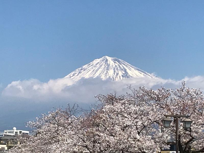富士山を求めて(*^^*)_f0361132_13114260.jpg