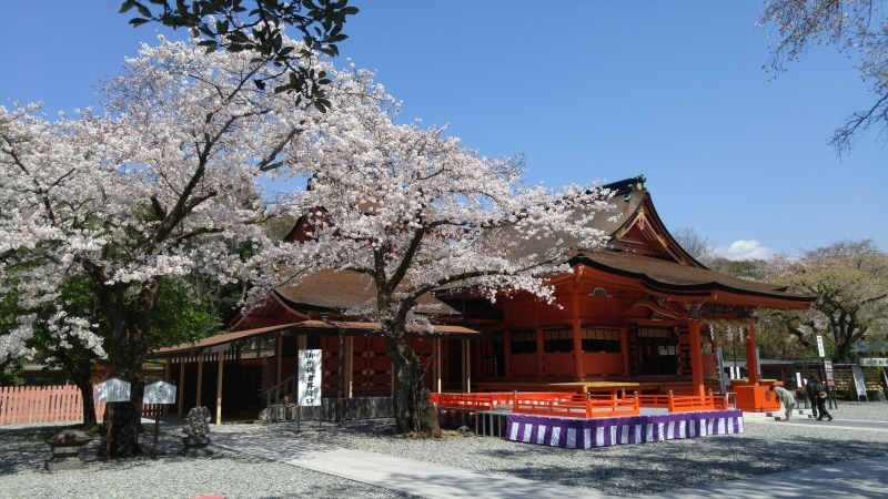 富士山を求めて(*^^*)_f0361132_13162974.jpg