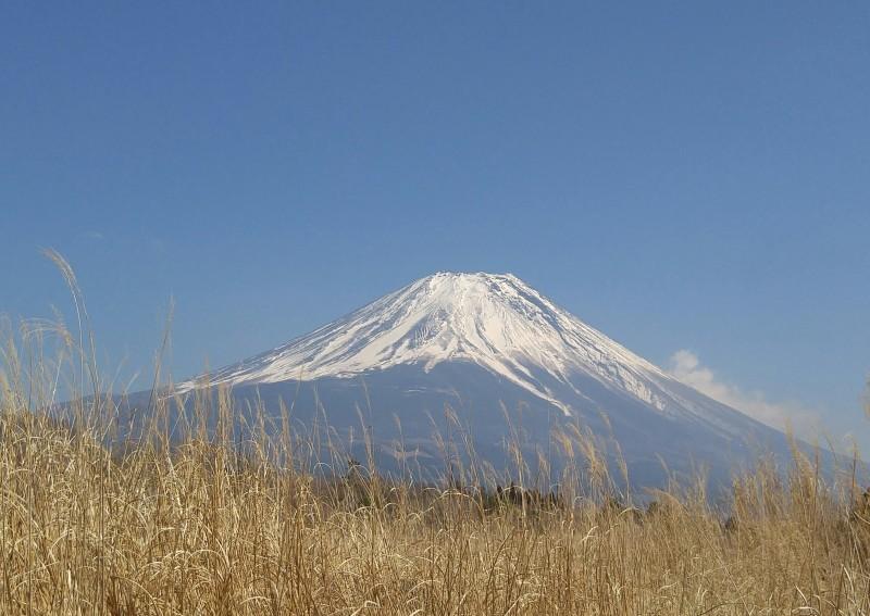 富士山を求めて(*^^*)_f0361132_13401727.jpg
