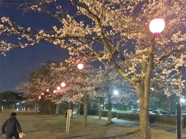 H31.4/6(土) かみす桜まつりイベント開催!_f0229750_16034391.jpg