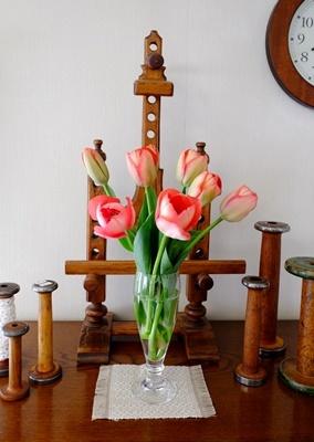 春ですね♪スプリングコートとチューリップ_b0194861_19003889.jpg