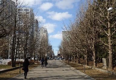 札幌 春は近くまで来ています。_f0362073_09271471.jpg