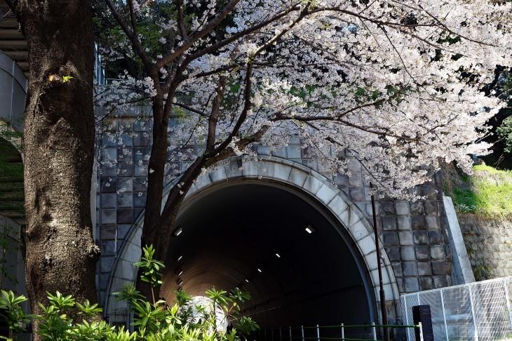 如何しても撮りたかったトンネル_e0305388_09433201.jpg